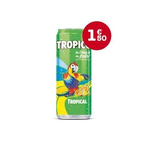 Tropico tropical - GUR KEBAB